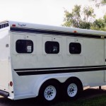 3 Horse Xtreme 1PLUSb